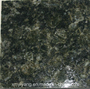 Wholesale China Green Stone- Verde Butterfly Green Granite pictures & photos