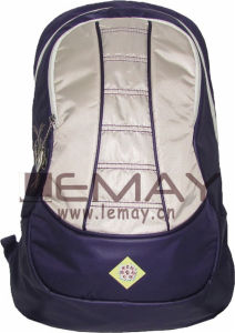Fashion Customized Sports Backpack pictures & photos