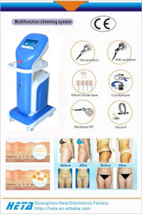 Euorpe Cryolipo Aesthetic Clinics Spas Equipment H-1000c pictures & photos