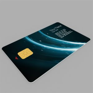 Sle5542 Sle5528 Contact IC Card Smart Card with PVC Material pictures & photos