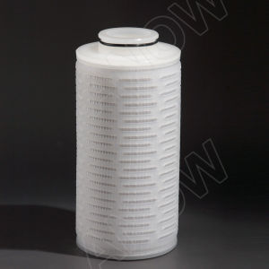 Food&Beverage Processing 0.45 Micro Water Filter Cartridge pictures & photos
