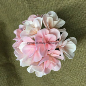 Artificial Home Decorative Sola Wood Flowers (SFA42) pictures & photos