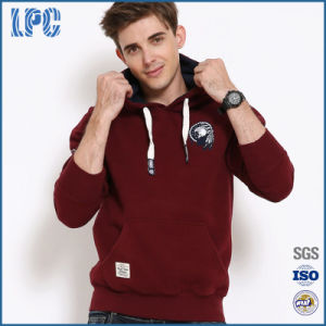 Fashionable Mens Sports Hoodies with Long - Sleeves pictures & photos
