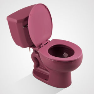 Cheap Porcelain Price Siphonic Two Piece Toilet, Purplish Red pictures & photos