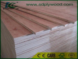 Commercial Plywood/Timber Bintangor Plywood with 1220X2440X2-18mm pictures & photos