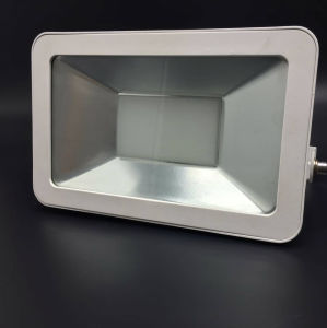 High Brightness LED Floodlight 50W Outdoor Lamp pictures & photos