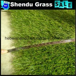 4 Tone Popular Grass Carpet for Garden Decoration pictures & photos