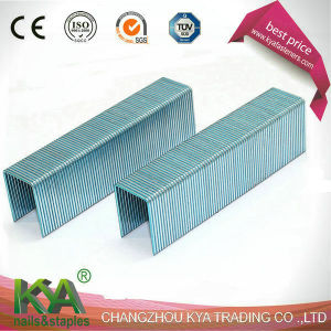 Gsw16 Series Staples for Construction, Roofing, Furnituring pictures & photos