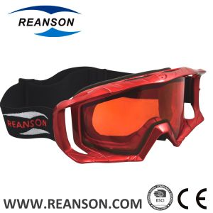 Reanson Comfortable Well Absorb Sweat Foam Professional Anti-Scratch Motorcycle Goggles pictures & photos