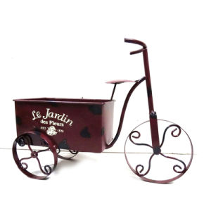 Practical Metal Tricycle Garden Flowerpot with Decal Wording pictures & photos