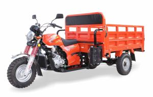 150cc/200cc/250cc Water/Air Five Hole Heavy Load Tricycle (SL200ZH-D) pictures & photos