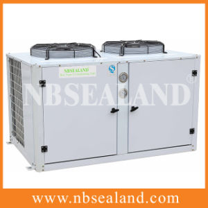 Package Condensing Unit pictures & photos