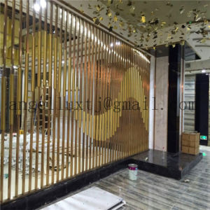 2017 New Design Modern 304 Stainless Steel Tube Screen Hotel Hall Wall Partition pictures & photos