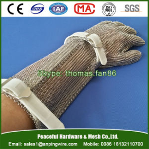 Stainless Steel Mesh Glove for Butcher Garment Oyster Processing pictures & photos