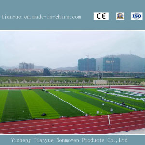 Artificial Lawn, Wear-Resistance Artificial Turf for Sports Field pictures & photos