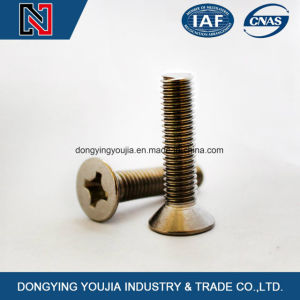 DIN965 Cross Recessed Countersunk Head Machine Screws pictures & photos
