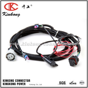 China Kinkong Electrical Holley Performance 558-405 Fuel Injection Wire Harness pictures & photos