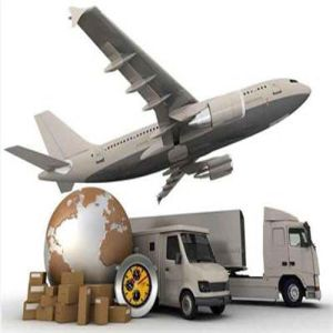 Courier Service From Shanghai to Germany