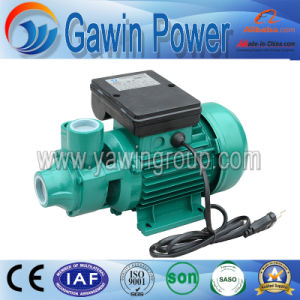 Electric Jet Water Pump for House Use with 12 Volt DC pictures & photos