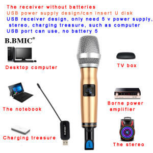 USB Wireless Microphone Home Computer and TV Meeting Outdoor Stereo Onboard Karaoke Microphone U Wireless Microphone pictures & photos
