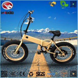 Wholesale 250W Fat Tire Electric Folding Bike for Child pictures & photos