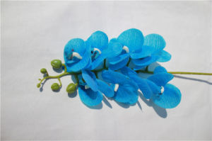 Cheap Phalaenopsis Artificial Flowers for Garden Decoration pictures & photos