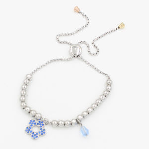 Adjustable Stainless Steel Bracelet with Brithday Stone & Clove Charm pictures & photos