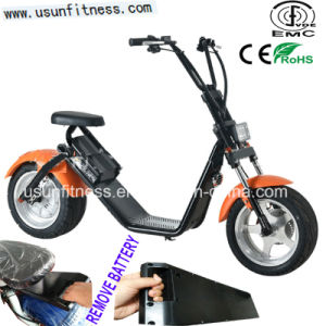 New Design Remove Battery City Coco with Aluminum Alloy Material pictures & photos