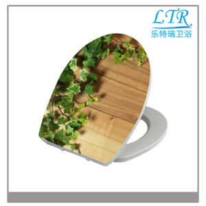 European Bathroom Custom Printed Toilet Seat pictures & photos
