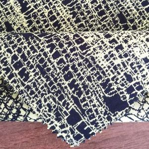 Popular Fashion Beautifal Individuality Jacquard Fabric pictures & photos