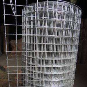 Welded Wire Mesh (Galvanized and PV Coated) pictures & photos