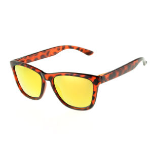 New Arrival Wholesale China Sunglasses pictures & photos