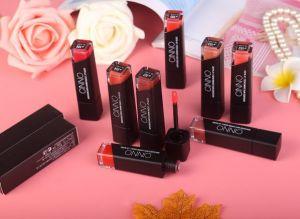 Moisturizing Lip Gloss Liquid Lipstick pictures & photos