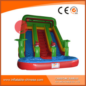2017 Inflatable Products Toy Cartoon Water Slide with Pool for Outdoor Game (T11-114) pictures & photos