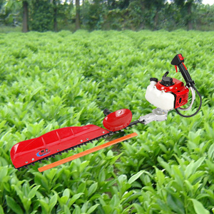 Hot Type Hedge Trimmer (XYHT-24C) with CE