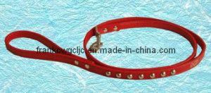 Pet Collars (GPC01019)