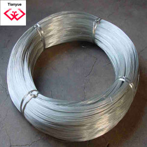 Anping Tianyue Construction Galvanized Iron Wire (TYH-031) pictures & photos