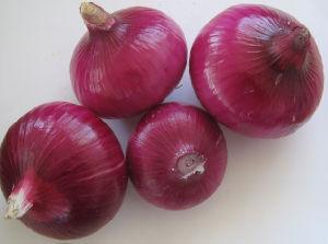 2015 New Crop Fresh Red Onion