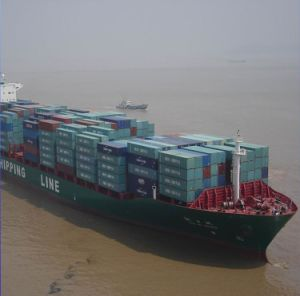 Ship From China to Fish Port Terminal, Kaohsiung, Keelung, Taichung pictures & photos