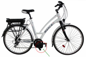 MID Driven Motor Electric Bike Bicycle with Shimano 9 Speed Gears pictures & photos