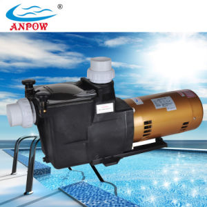 Factory Supply Efficient Plastic Swimming Pool Circulation Pump pictures & photos
