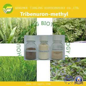 Tribenuron-Methyl (95%TC, 10%WP, 75%WP, 60%WG, 75%WG, 20%SP) pictures & photos