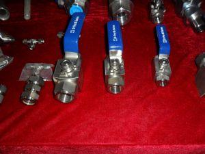 Vacuum Stop Valve /CNG LNG Check Valve pictures & photos
