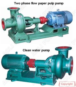 Paper Pulp Pump pictures & photos