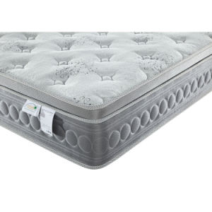 Pocketed Spring Mattress with Euro Top Memory Foam Plush Mattress for bedding Dfm-19 pictures & photos