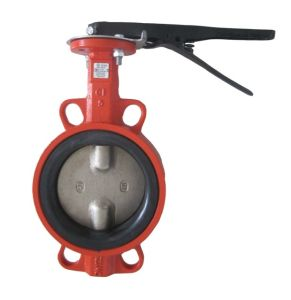 Double Axis Butterfly Valve in Wafer Type (YH-D71X) pictures & photos