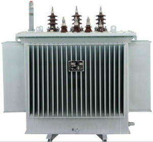 22kv Distribution Transformer (Oil immersed) pictures & photos