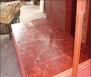 Shuttering Plywood for Construction Formwork