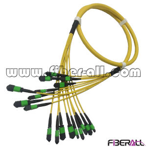 72fibers MPO Optical Fiber Patch Cord Breakout Type pictures & photos