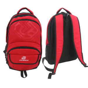 Daily School Leisure Student Outdoor Sports Travel Backpack Bag pictures & photos